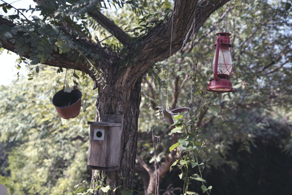 How To Make A Rain Guard For A Bird Feeder