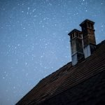 How Long For A Bird Stuck In Chimney To Die? (And How to Help!)
