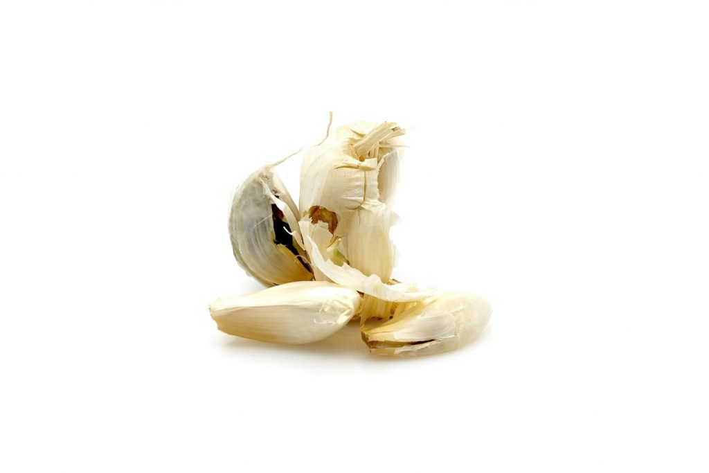 is garlic powder bad for dogs