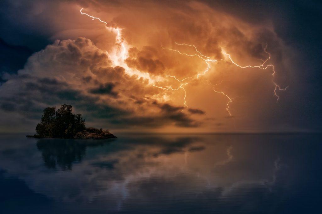 do birds get struck by lightning